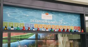 Entchen-Bundesliga
